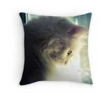 Fighting These Fears Throw Pillow