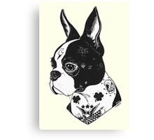 Tattooed Boston Terrier  Canvas Print