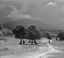 Road to Savanne Plate in Haiti  by Kent Nickell