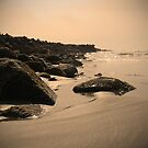 Beach  by Lady  Dezine