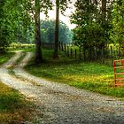 Country Roads in Grunge by Chelei