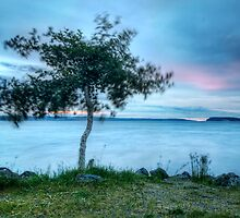 The Barely There Sunset by Mari  Wirta