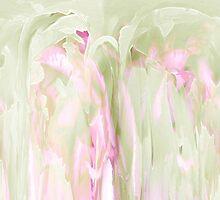 Daydreams by AuntDot