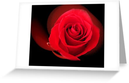 Red, Red Rose by Mistyarts