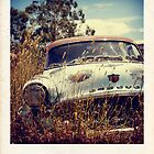Faux Desoto Polaroid by Mark Will