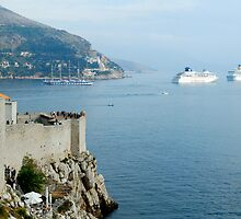 The walls and harbour of the ancient city of Dubrovnik by Sheldon Levis
