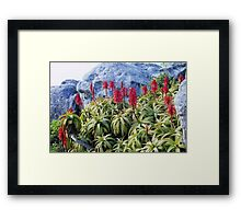 Table Top Foliage Framed Print