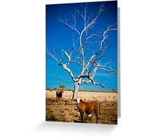 Forgotten Tree - Well Plains, QLD Greeting Card
