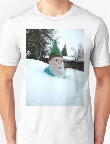 Deep Winter Gnome T-Shirt