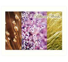 Pilbara Weeds Art Print