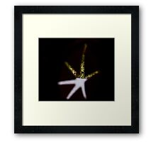 Star in the Toys! Framed Print