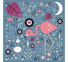 Flamingo & Chick  Photographic Print