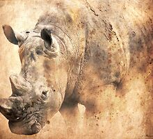 Rhino in the Dust by Norman Rawn