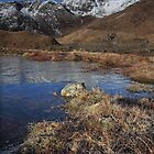 Ice Pools at Snowdon  by robevans