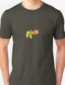Splitting Season T-Shirt