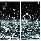 The Fountain Song by Irina Chuckowree