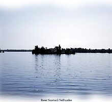 St. Lawrence Seaway/Thousand Islands #16 by Rose Santuci-Sofranko