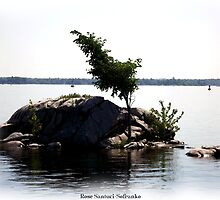 St. Lawrence Seaway/Thousand Islands #22 by Rose Santuci-Sofranko