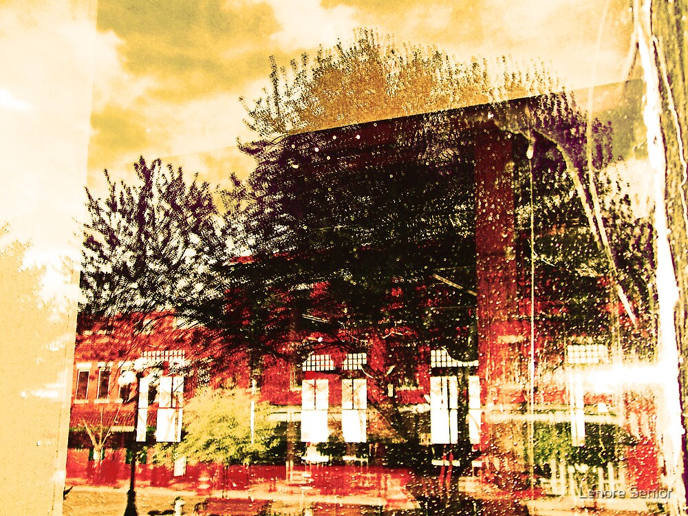 Reflections on the Old Depot by Lenore Senior