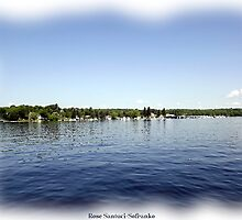 St. Lawrence Seaway/Thousand Islands #29 by Rose Santuci-Sofranko