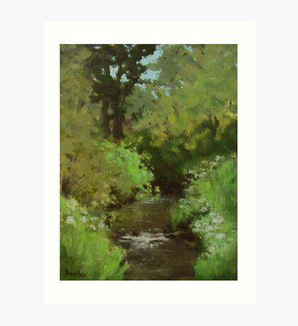 Creek at North Bank Habitat Mgmt Art Print