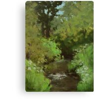 Creek at North Bank Habitat Mgmt Canvas Print