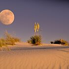 Sand Dunes Heaven  by Judy Grant