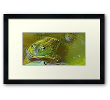 Symphony in Green Framed Print