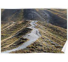 Way in alpine grassland Poster
