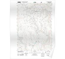 USGS Topo Map Oregon Flag Prairie 20110801 TM Poster