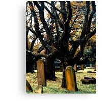 Cemetery Trees Canvas Print