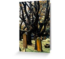Cemetery Trees Greeting Card