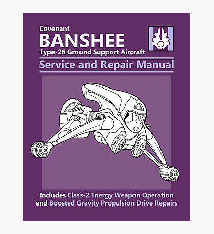 Banshee Service and Repair Manual Photographic Print