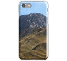 Alpine grassland iPhone Case/Skin