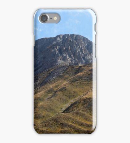 Alpine grassland iPhone Case/Skin