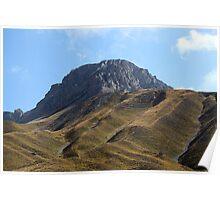 Alpine grassland Poster