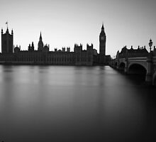 Palace of Westminster, London 2011 by Timothy Adams