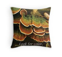Look for Color in Unexpected Places Throw Pillow