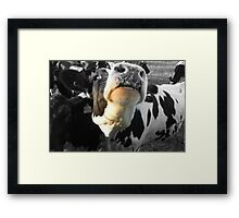 Will You Scratch Under My Chin  No 2 Framed Print