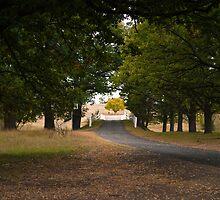 Salisbury Waters Bridge, Gostwyk, NSW by Odille Esmonde-Morgan