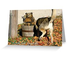 Look for Humor to Brighten Your Day Greeting Card