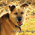 Look, and Enjoy the Day! by Deb Fedeler