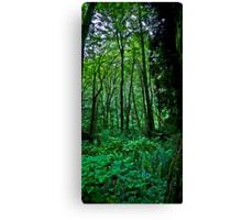 terrarium green Canvas Print
