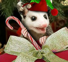 Christmas Elf Opossum by jkartlife