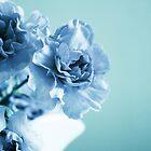 Blue Period by Nicole Bertrand