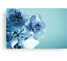 Blue Period Canvas Print