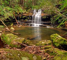Lower Falls by Terry Everson