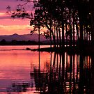 lake samsonvale, queensland, australia by gary roberts