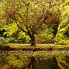 Alfred Nicholas Gardens by prbimages