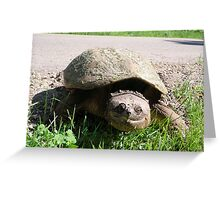 Huge Snapping Turtle Laying Eggs Greeting Card
